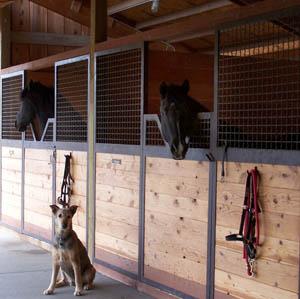 horse boarding central oregon