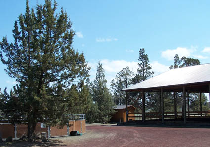 stone pony dressage facility central oregon